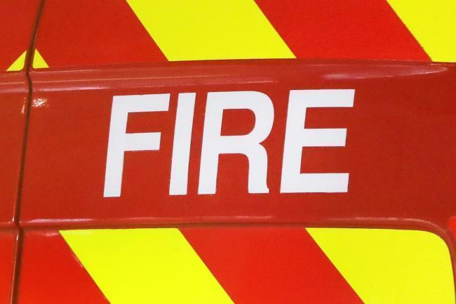 Several fire crews across Essex were called to rescued the horse in North Weald