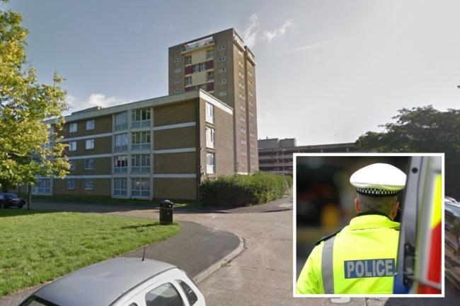 A teenage boy was stabbed in Sharpecroft in Harlow yesterday, Essex Police has said. Photo: Google Maps