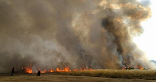 The fire on Wanstead Flats